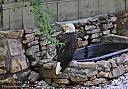Bald Eagle by grandpaw in Member Albums